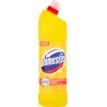 Domestos Przedłużona Moc Citrus Fresh Płyn czyszcząco-dezynfekujący 1250 ml