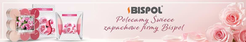 BISPOL SWIECE